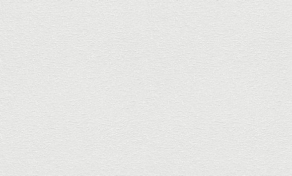 STRUKTUURTAPEET 183610 1,06x25 pilt
