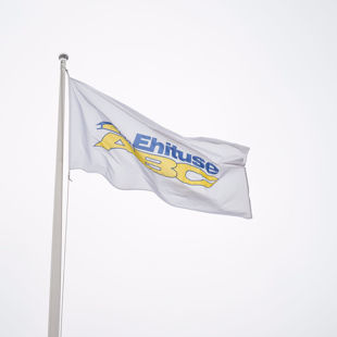 Picture for category Flags and flagpoles