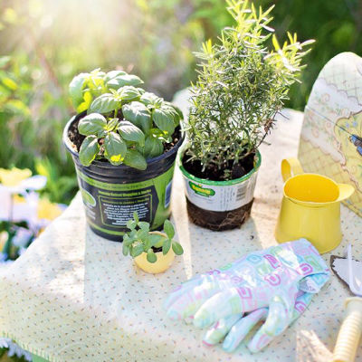 Kuidas aias töötamine sinu tervisele hästi mõjub?