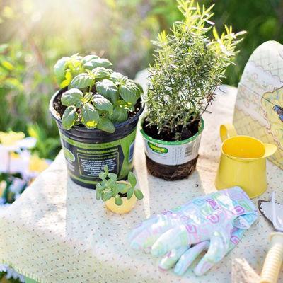 Какое положительное влияние оказывает на ваше здоровье работа в саду?