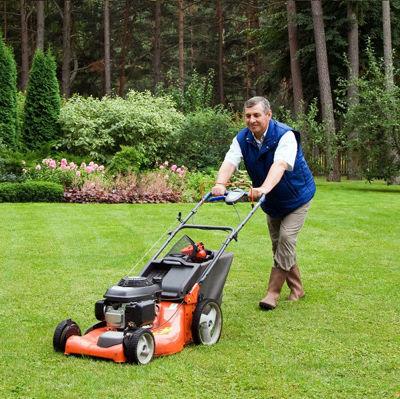 7 весенних задач, чтобы вырастить красивый газон